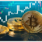 how it turns out that btc is the best invest
