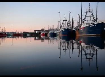 IBM Blockchain Solution Provides Seafood Traceability